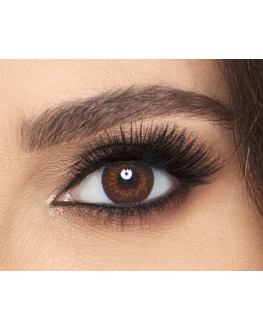 Freshlook Colorblends - Brown